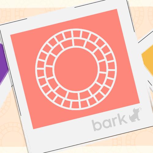 Bark Now Monitors Photo-Editing App VSCO