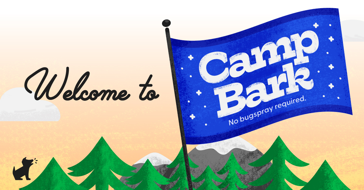 A blue camp banner against a yellow sky with evergreen trees at the bottom